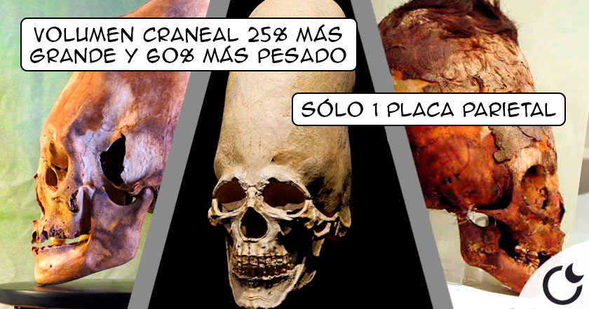 Los cráneos ALARGADOS de Paracas. Definitivamente NO SON HUMANOS