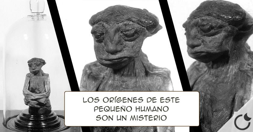 Momia confirmaría la existencia de una raza perdida de gente pequeña en norteamérica