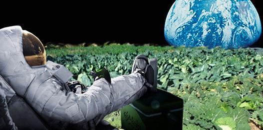 ¿ Plantar coliflores en Marte ?