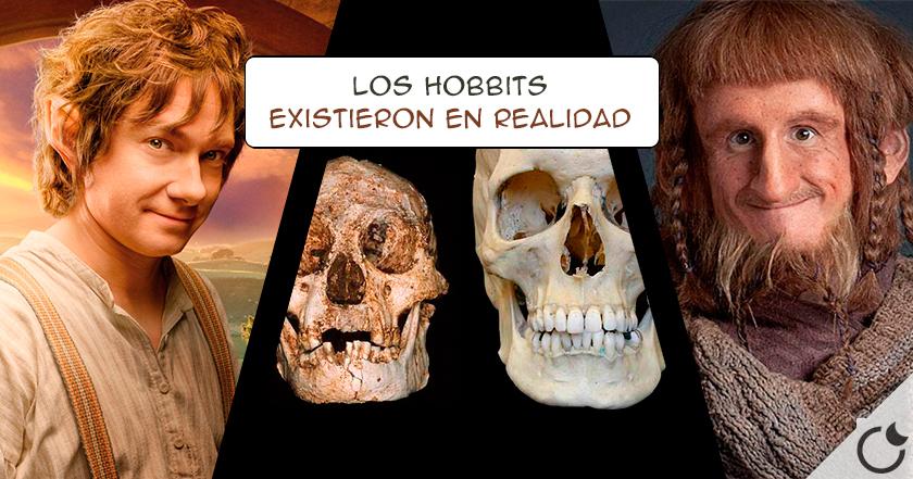 LOS HOBBITS existieron y NO eran humanos DEFORMES:Orígenes de la especie