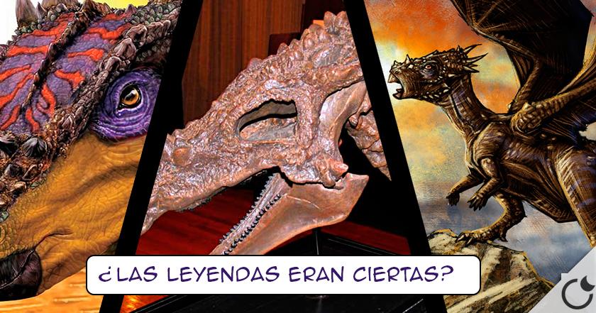 ¿Los DRAGONES un cuento? No te equivoques..AQUÍ tienes LA PRUEBA: Dracorex Hogwartsia (EE.UU.)
