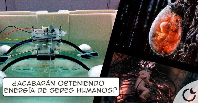 ¿Matrix ESTÁ LLEGANDO? Robot que DEVORA SERES VIVOS para obtener ENERGÍA es inventado