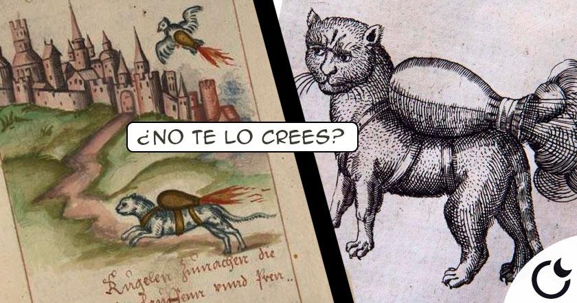 Usar GATOS CON COHETES para CONQUISTAR castillos. Manuscrito medieval RECOMIENDA
