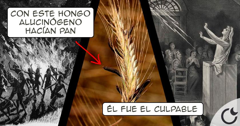 Las brujas en la E.Media NO LO ERAN. Estaban intoxicadas por hongo ALUCINÓGENO en el pan