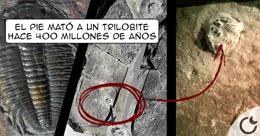 Un pie CALZADO PISÓ un trilobite hace 400 mill. de años. ¿Quién pudo ser?