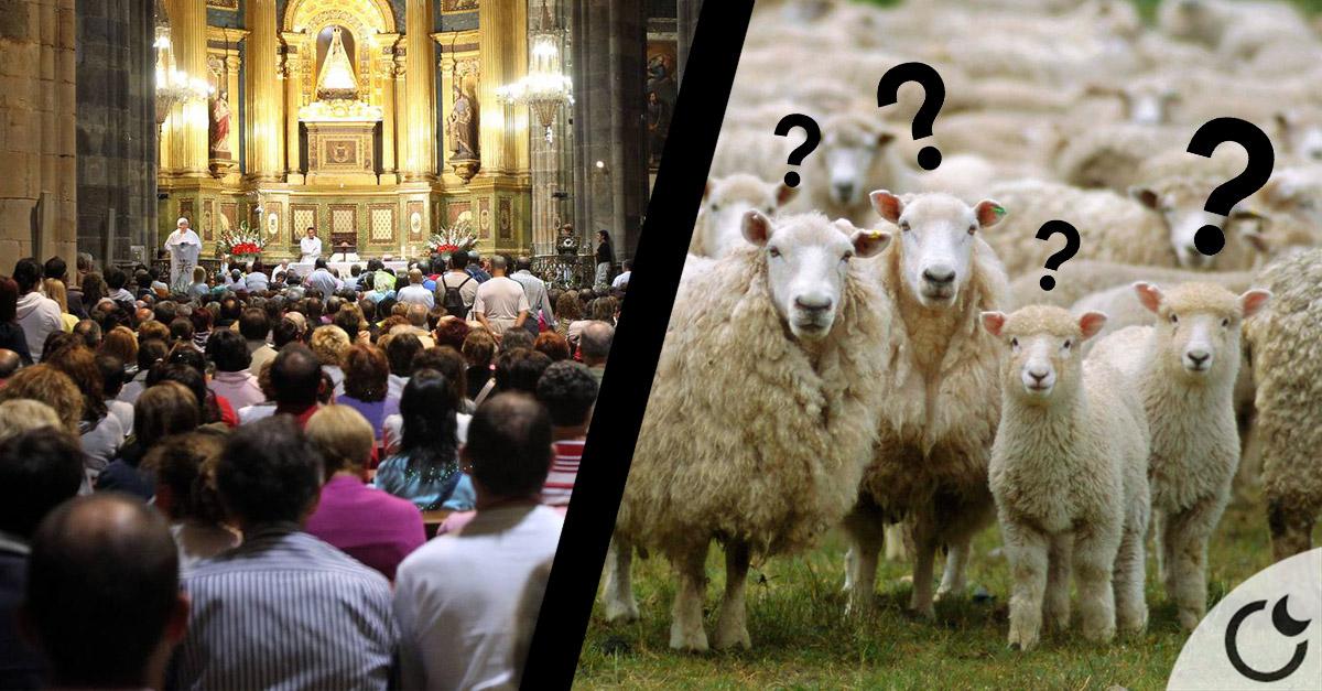 La HUMILLANTE comparación de Cristianos con OVEJAS y Jesús como PASTOR